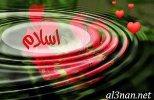 صور-اسم-اسلام-2019-خلفيات-ورمزيات_00026-300x196 صور اسم اسلام 2019 خلفيات و رمزيات