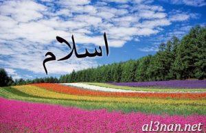 صور-اسم-اسلام-2019-خلفيات-ورمزيات_00029-300x194 صور اسم اسلام 2019 خلفيات و رمزيات