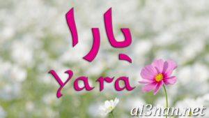 صور-اسم-يارا-2019-خلفيات-ورمزيات_00362-300x169 صور اسم يارا 2019 خلفيات ورمزيات