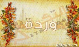 صور-اسم-وردة-2019-خلفيات-ورمزيات_00301-300x180 صورة لاسم وردة 2019 خلفيات و رمزيات