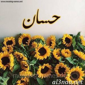 صور-اسم-حسان-خلفيات-اسم-حسان-رمزيات-اسم-حسان_00101 صور اسم حسان ، خلفيات اسم حسان ، رمزيات اسم حسان