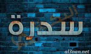 صور-اسم-سيدرا-خلفيات-اسم-سيدرا-رمزيات-اسم-سيدرا_00259-300x180 صور اسم سيدرا ، حلفيات اسم سيدرا ، رمزيات اسم سيدرا