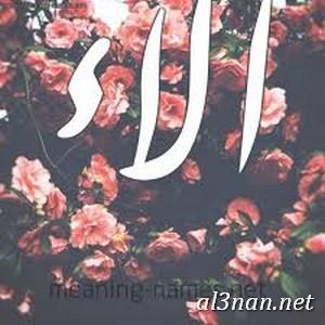 صور-اسم-الاء-خلفيات-اسم-الاء-رمزيات-اسم-الاء_00176 صور اسم الاء، خلفيات اسم الاء، رمزيات اسم الاء