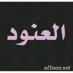 صور-اسم-العنود-خلفيات-اسم-العنود-رمزيات-اسم-العنود_00023 صور اسم العنود،خلفيات اسم العنود ،رمزيات اسم العنود