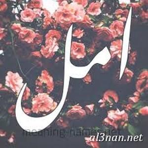 صور-اسم-امل-خلفيات-اسم-امل-رمزيات-اسم-امل_00032 صور اسم امل ، خلفيات اسم امل ، رمزيات اسم امل
