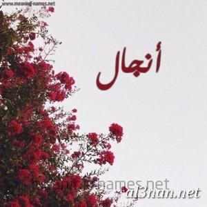 صور-اسم-انجال-خلفيات-اسم-انجال-رمزيات-اسم-انجال_00312 صور اسم انجال ، خلفيات اسم انجال ، رمزيات اسم انجال