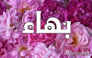 صور-اسم-بهاء-خلفيات-اسم-بهاء-رمزيات-اسم-بهاء_00623-300x188 صور اسم بهاء ، خلفيات اسم بهاء ، رمزيات اسم بهاء