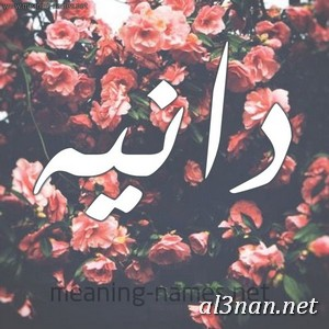 صور-اسم-دانية-خلفيات-اسم-دانية-رمزيات-اسم-دانية_00854 صور اسم دانية ، خلفيات اسم دانية ، رمزيات اسم دانية