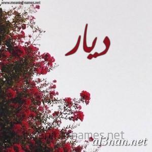 صور-اسم-ديار-خلفيات-اسم-ديار-رمزيات-اسم-ديار_00883 صور اسم ديار ، خلفيات اسم ديار ، رمزيات اسم ديار