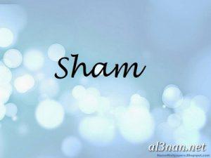 صور-اسم-شام-خلفيات-اسم-شام-رمزيات-اسم-شام_00186-300x225 صور اسم شام ، خلفيات اسم شام ، رمزيات اسم شام