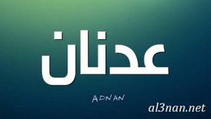 صور-اسم-عدنان-خلفيات-اسم-عدنان-رمزيات-اسم-عدنان_00252-300x170 صور اسم عدنان ، خلفيات اسم عدنان ، رمزيات اسم عدنان