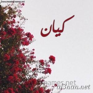 صور-اسم-كيان-خلفيات-اسم-كيان-رمزيات-اسم-كيان_00337 صور اسم كيان ، خلفيات اسم كيان ، رمزيات اسم كيان