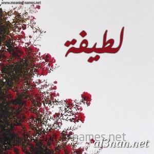 صور-اسم-لطيفة-خلفيات-اسم-لطيفة-رمزيات-اسم-لطيفة_00363 صور اسم لطيفة ، خلفيات اسم لطيفة، رمزيات اسم لطيفة