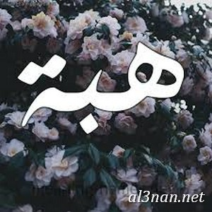 صور-اسم-هبة-خلفيات-اسم-هبة-،-رمزيات-اسم-هبة_00692 صور اسم هبة ، خلفيات اسم هبة ، رمزيات اسم هبة