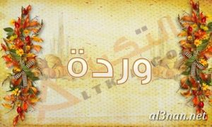 صور-اسم-وردة-خلفيات-اسم-وردة-،-رمزيات-اسم-وردة_00722-300x180 صور اسم وردة، خلفيات اسم وردة، رمزيات اسم وردة