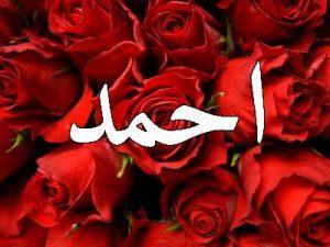 2327-1-300x225 صور اسم احمد ، خلفيات اسم احمد ، رمزيات اسم احمد