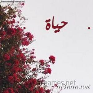 صوراسم-حياة،-خلفيات-اسم-حياة،-رمزيات-اسم-حياة_00093 صور اسم حياة ، خلفيات اسم حياة ، رمزيات اسم حياة