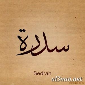 صوراسم-سيدرة،-خلفيات-اسم-سيدرة،-رمزيات-اسم-سيدرة_00282 صوراسم سيدرة2020,خلفيات اسم سيدرة ,رمزيا اسم سيدرة