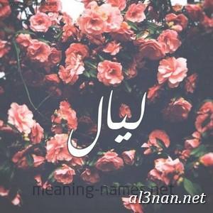 صوراسم-ليال،-خلفيات-اسم-ليال،-رمزيات-اسم-ليال_00244 صور اسم ليال ، خلفيات اسم ليال ، رمزيات اسم ليال