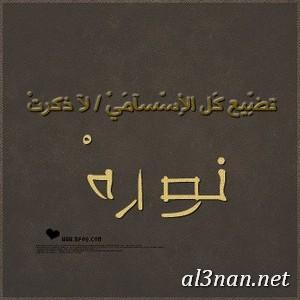 صوراسم-نورة-،خلفيات-لاسم-نورة،رمزيات-لاسم-نورة_00450 صور اسم نورة ، خلفيات اسم نورة، رمزيات اسم نورة