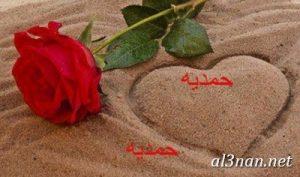 صور-اسم-حمدية-خلفيات-اسم-حمدية-رمزيات-اسم-حمدية_00366-300x177 صور اسم حمدية ،خلفيات اسم حمدية،رمزيات اسم حمدية