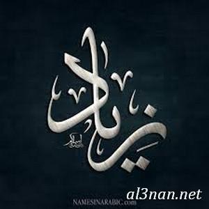 صور-اسم-زياد،-خلفيات-اسم-زياد-رمزيات-اسم-زياد_00115 صور اسم زياد ،خلفيات اسم زياد ،رمزيات اسم زياد