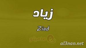 صور-اسم-زياد،-خلفيات-اسم-زياد-رمزيات-اسم-زياد_00126-300x169 صور اسم زياد ،خلفيات اسم زياد ،رمزيات اسم زياد