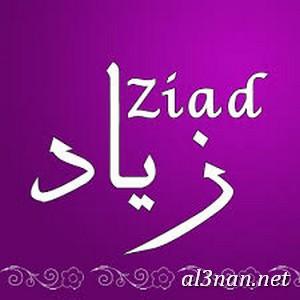 صور-اسم-زياد،-خلفيات-اسم-زياد-رمزيات-اسم-زياد_00129 صور اسم زياد ،خلفيات اسم زياد ،رمزيات اسم زياد