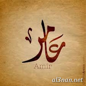 صور-اسم-عامر،-خلفيات-اسم-عامر-رمزيات-اسم-عامر_00376 صور اسم عامر ،خلفيات اسم عامر ،رمزيات اسم عامر