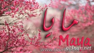 صور-اسم-مايا-خلفيات-اسم-مايا-رمزيات-اسم-مايا_00184-300x170 صور اسم مايا ، خلفيات اسم مايا ، رمزيات اسم مايا