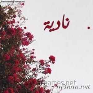 صور-اسم-نادية،-خلفيات-اسم-نادية-،-رمزيات-لاسم-ناديه_00207-1 صور اسم نادية ، خلفيات اسم نادية ، رمزيات اسم نادية