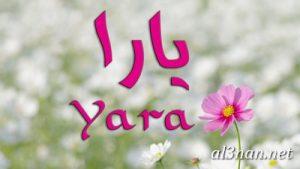 صور-اسم-يارا-خلفيات-اسم-يارا-رمزيات-اسم-يارا_00447-300x169 صور اسم يارا ، خلفيات اسم يارا ، رمزيات اسم يارا