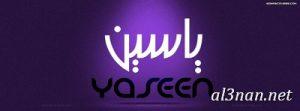 صور-اسم-ياسين-خلفيات-اسم-ياسين-رمزيات-اسم-يس_00741-300x111 صور اسم ياسين , خلفيات اسم ياسين , رمزيات اسم ياسين