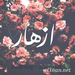 صوراسم-ازهار،-خلفيات-اسم-ازهار،-رمزيات-اسم-ازهار_00041-1 صور اسم أزهار 2020,خلفيات اسم أزهار ,رمزيات اسم أزهار