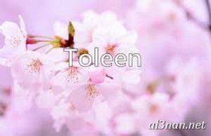 صوراسم-تولين،-خلفيات-اسم-تولين-،-رمزيات-اسم-تولين_00025-300x194 صور اسم تولين 2020,خلفيات اسم تولين ,رمزيات اسم تولين